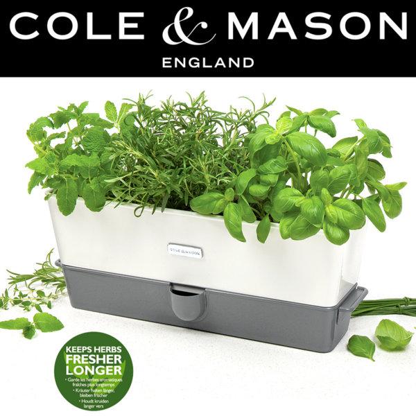 COLE & MASON Самополиваща се кашпа за зелени подправки или цветя